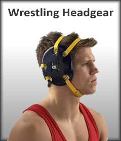 Best Wrestling Headgear
